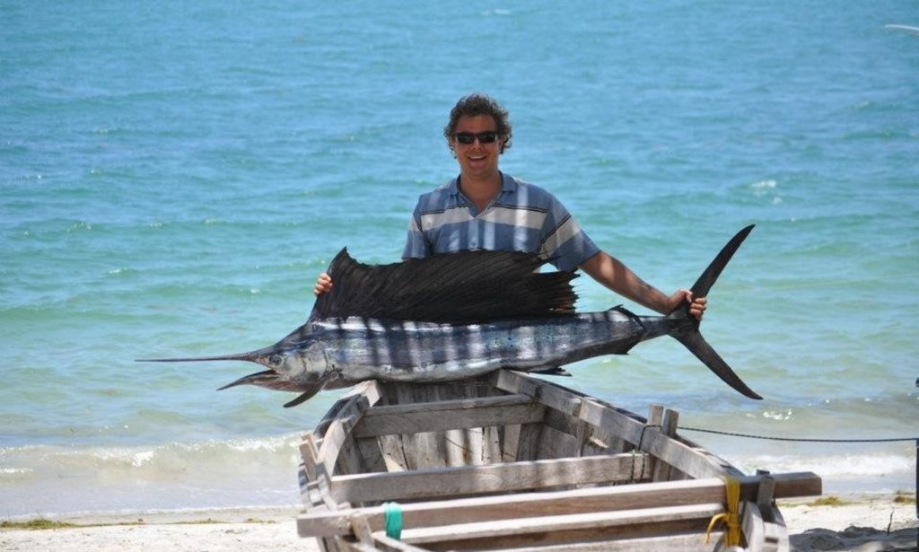 Guest Sailfish OnShore